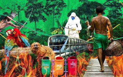 Educação ambiental: uma transformação necessária